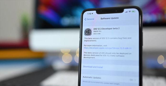 iOS 12.3 beta 2