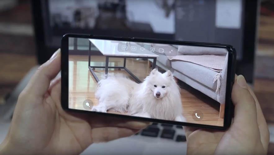 Xiaomi Pawbby Smart Pet Snack Machine